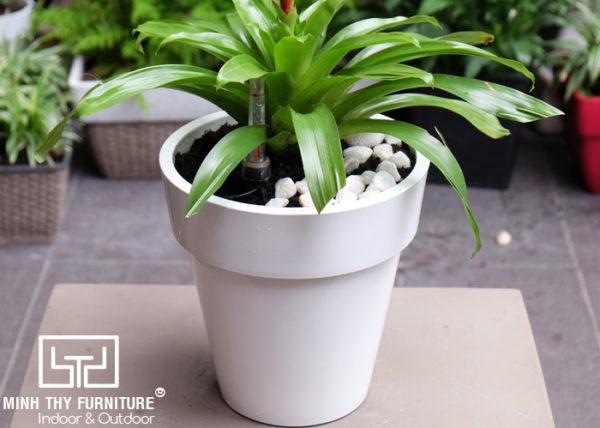Chậu trồng cây tự dưỡng sơn tròn -ST18.5