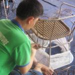 Hướng dẫn qua video cách đan ghế nhựa giả mây ngoài trời tại xưởng đan mẫu Minh Thy Furniture